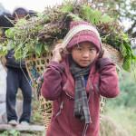 Nepal_2014_O121-17